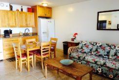 Waikiki Banyan 24th livingroom view